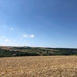 沿着宗教连环画一路上山,盛夏的田野有一种成熟丰腴的美,让人感到格外安心。值得重返。