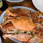 ภาพถ่ายของ Sopa Seafood