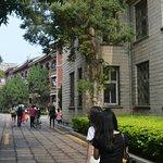 """厦门大学,所谓的""""中国最美大学"""