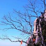 ภาพถ่ายของ Jiuhua Mountain