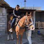 صورة فوتوغرافية لـ Horse Riding Tour