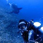 Photo of Lembongan Divers