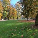 Zdjęcie Łazienki Królewskie w Warszawie