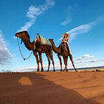 Photo of Yassin Morocco Tours