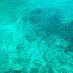 Bild från Love Diving Phuket