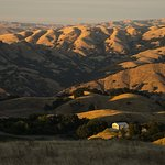 Mission Peak Regional Preserve Foto