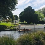 Photo of Christchurch Botanic Gardens