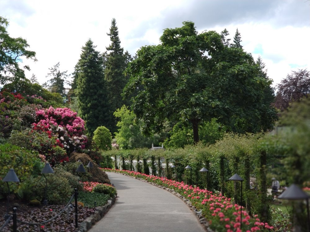 The Butchart Gardens Central Saanich 2018 All You Need To Know Before You Go With Photos
