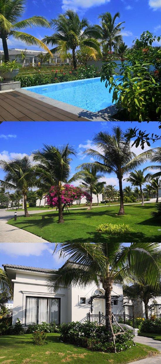 每栋别墅自带小泳池,酒店绿化很好。
