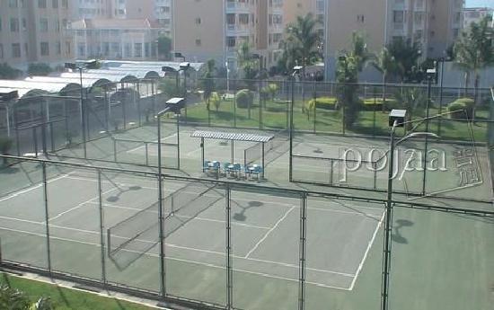 Jin Ding Hotel : 金鼎大酒店网球场