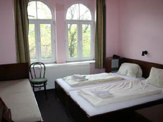 Hotel U Ceske koruny: hotel10