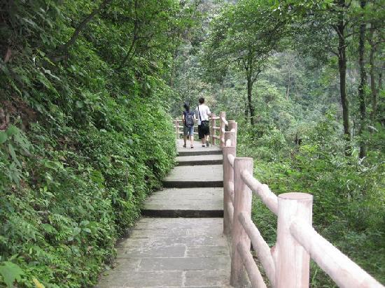 Mount Emei (Emeishan): 你看这美景,真的就想在那里长住哦,好一个天然的养吧
