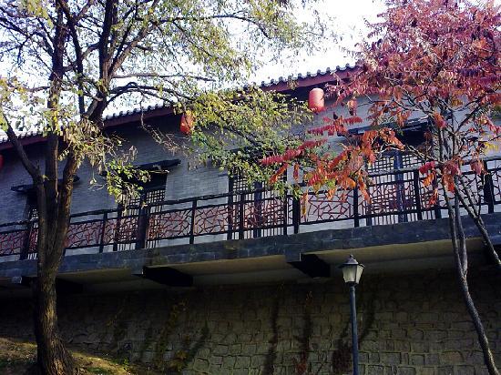 Bailong Tang Royal Holiday Hotel: 外面的景色