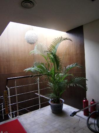 Jiaolou Business Hotel: 这是酒店楼梯处的视觉效果。