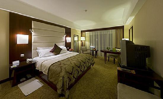 Spring City Garden Hotel : 1