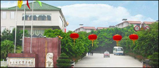Photo of Golden Gorges Hongsheng Holiday Village Chongqing
