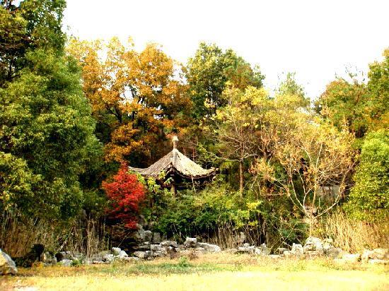 Yixing, China: 树掩亭