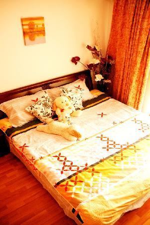 Xinqing Self-help Apartment Hotel Chengdu Chunxi : 住馨情 好心情