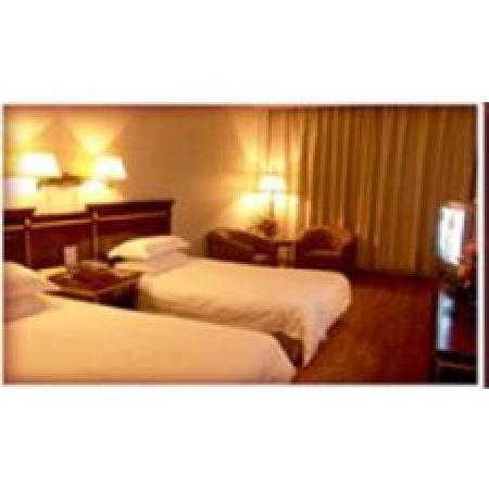 Diyuan Hotel : 普通标间