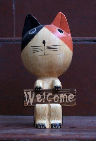 Dozycat Youth Hostel: welcome !