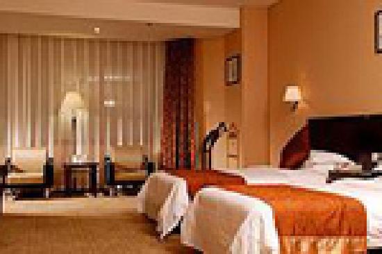 Phoenix Grand Hotel: 双人间