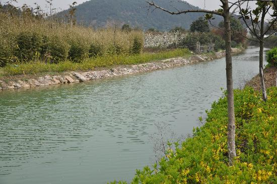 Scholars Hotel Dushu Lake: 周围的环境山清水秀