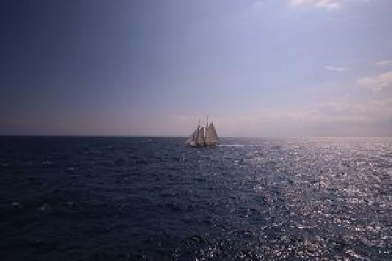 Principato di Monaco: 摩纳哥