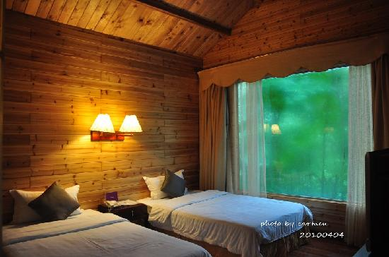 Forest Sea Holiday Wood House : 房间