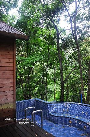 Forest Sea Holiday Wood House : 私家泳池