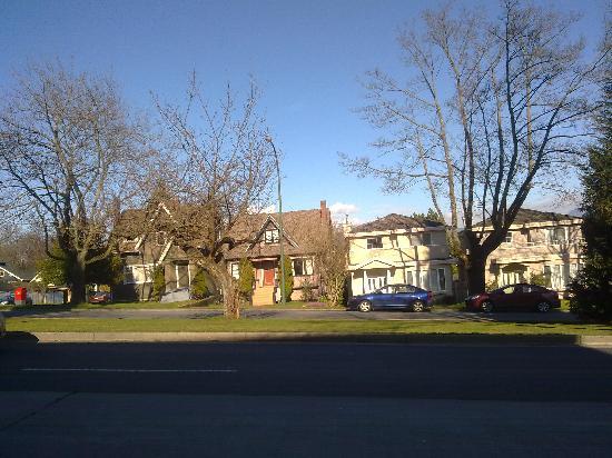 Vancouver, Canadá: 这个是2月下旬在等公交车的时候随手拍的。树叶还没长出来~