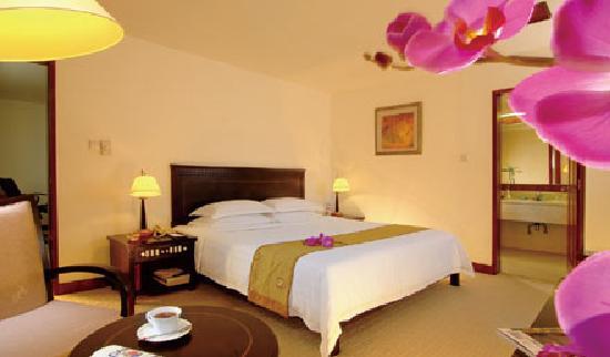 Park City Hotel - Xiamen China : 房间