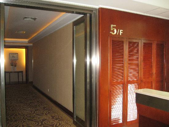 B&B Business Hotel: 酒店的走廊