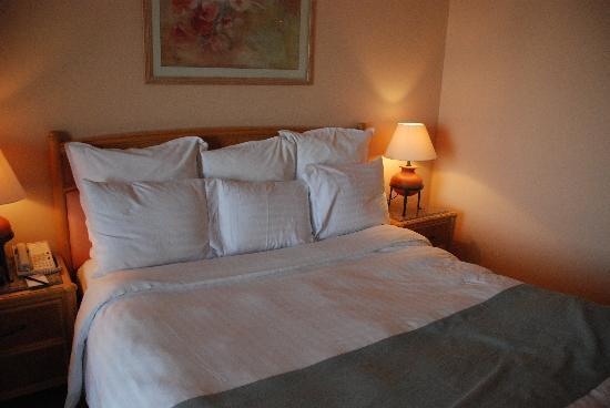 Hurghada Marriott Beach Resort: 床看起来很普通,但很柔软,睡的很舒服