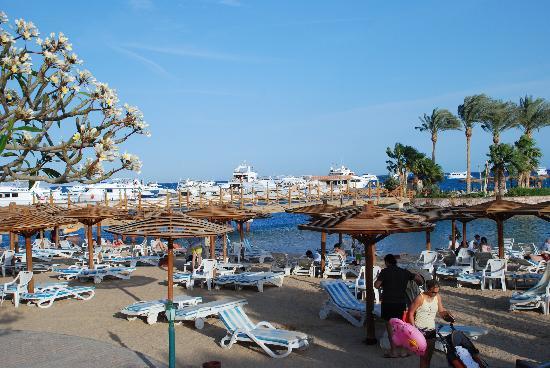 Hurghada Marriott Beach Resort: 独立海滩