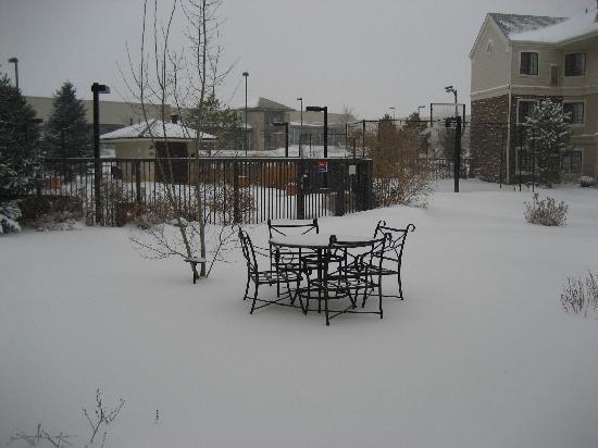 Staybridge Suites Denver South-Park Meadows: Hotel garden in snow