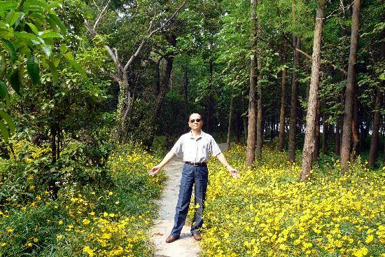 Islet Healthy Resort : 爱人在住房外附近的树林和鲜花丛中