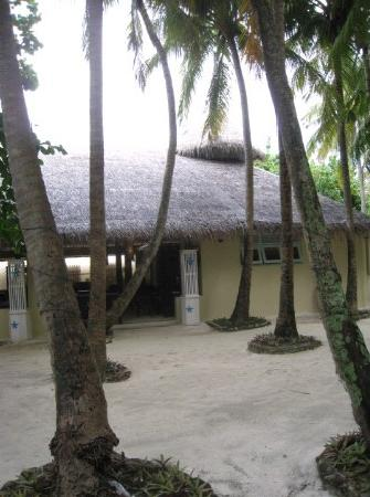 Ellaidhoo Maldives by Cinnamon: 23682