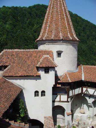 Romênia: 吸血鬼公爵的城堡