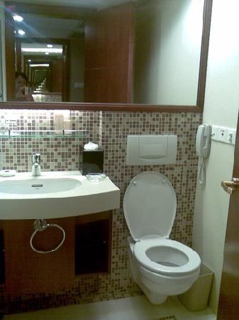 Hotel Paris Pan-Island: 清洁的厕所