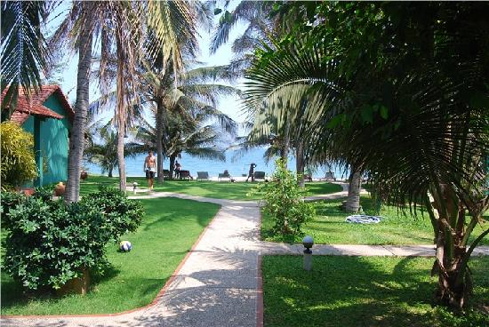 Hiep Hoa Resort: 酒店的小径,直接通向大海。