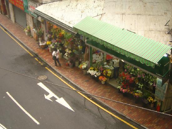 Sohotel: 房间望出去是小路对面的花铺