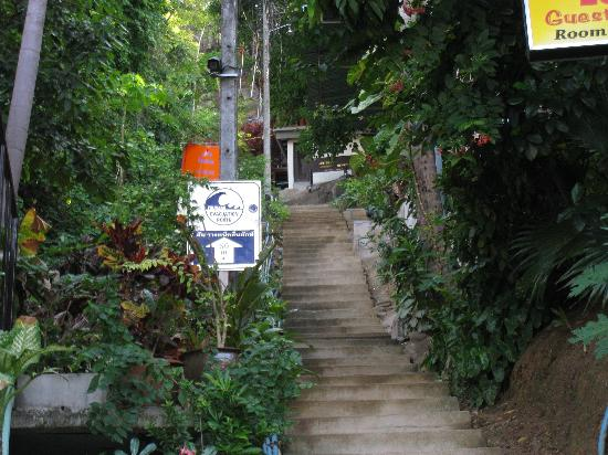Phi Phi Arboreal Resort: img_0073