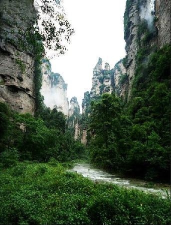 Zhangjiajie, Chine : 张家界金鞭溪