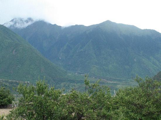 Nyingchi Hotel : 宾馆门前不远的山