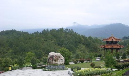 Wuyi Mountain Jingmin Glof Hotel: 酒店风景