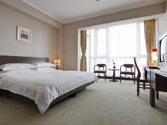 Starway Hanzhou Hotel: 商务房