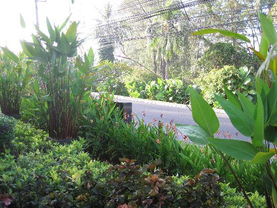LHC Phuket Resort: 酒店门前的路
