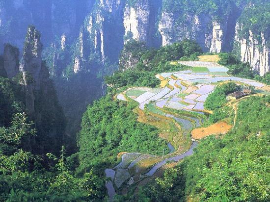 Zhangjiajie, Chine : 空中田园