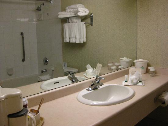 Holiday Inn Vancouver Airport: 卫生间