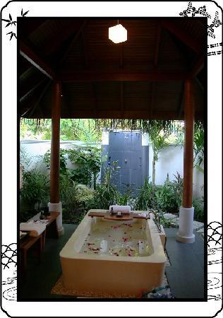 Anantara Kihavah Maldives Villas : 好嗲的鱼缸